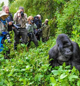 national-parks-in-Uganda-6